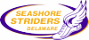 a0b1f4501e754220e0316951f30fd606 Ongoing Events & Things To Do - Rehoboth | Dewey | Delaware Beaches