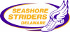 cee591d1abbbc55e816e70940bd890bf Beach Fun & Bargains | Events in Rehoboth and Dewey Beach - Rehoboth Beach Resort Area