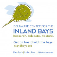 Delaware Center for the Inland Bays: Environmental Educator