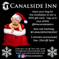 Deck Your Dog for the Howlidays Photo Contest