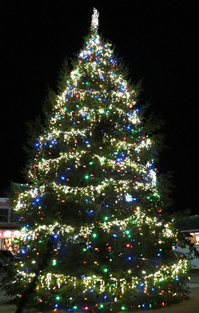 Rehoboth Beach Christmas Tree 2012