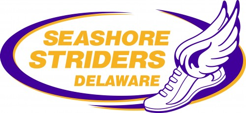 Seashore Striders